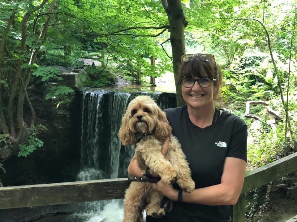 Dog Training Market Drayton - Debbie Harrison